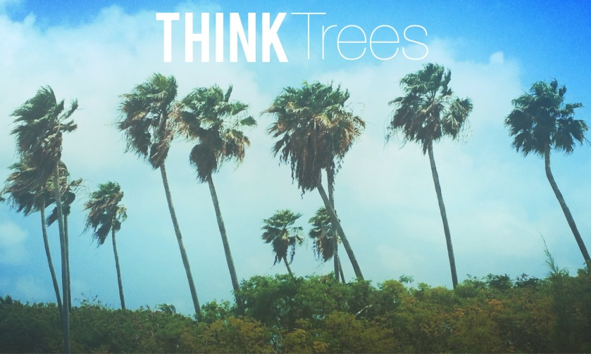 thinktrees