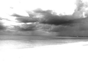beachbwrain2