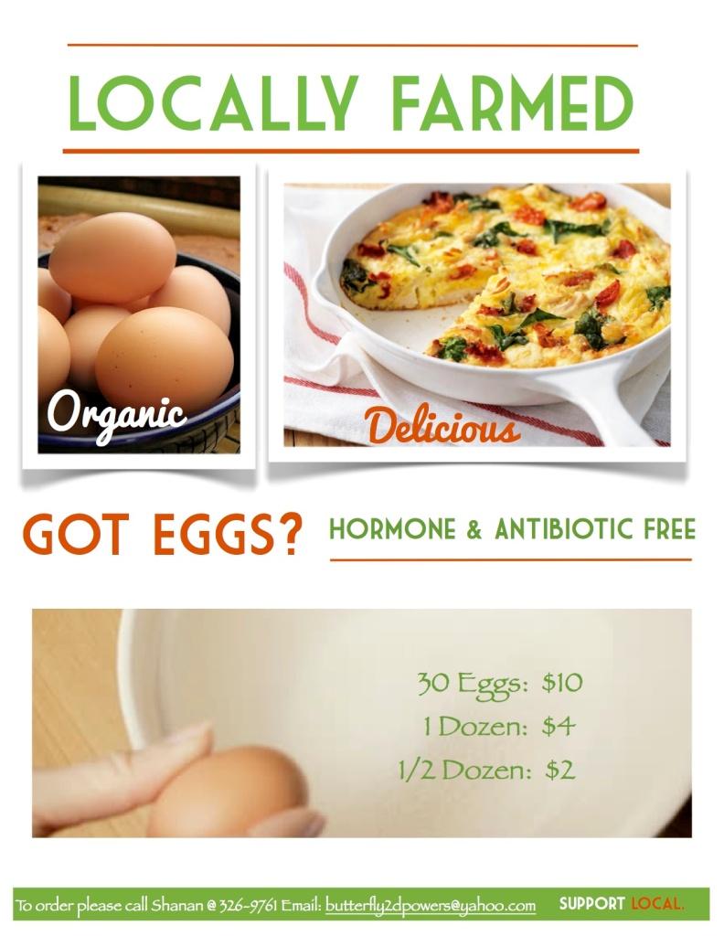 Got Eggs1 Flyer 3 JPEG
