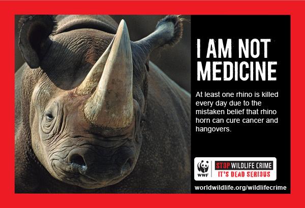 Wildlife_Crime_Online_ad__Horizontal_600px_Rhino