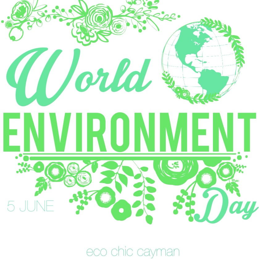 world environment day 2014