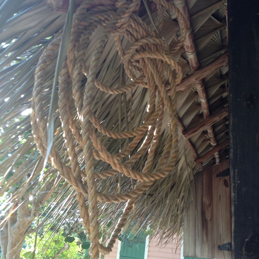 Silver Thatch Rope