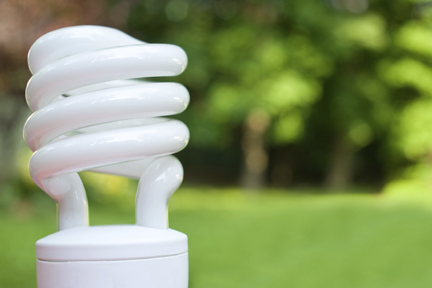 Top 5 green resolutions for 2016 Light bulbs energy efficient
