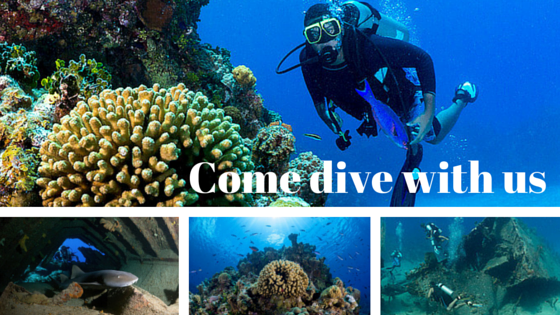 Come dive with us