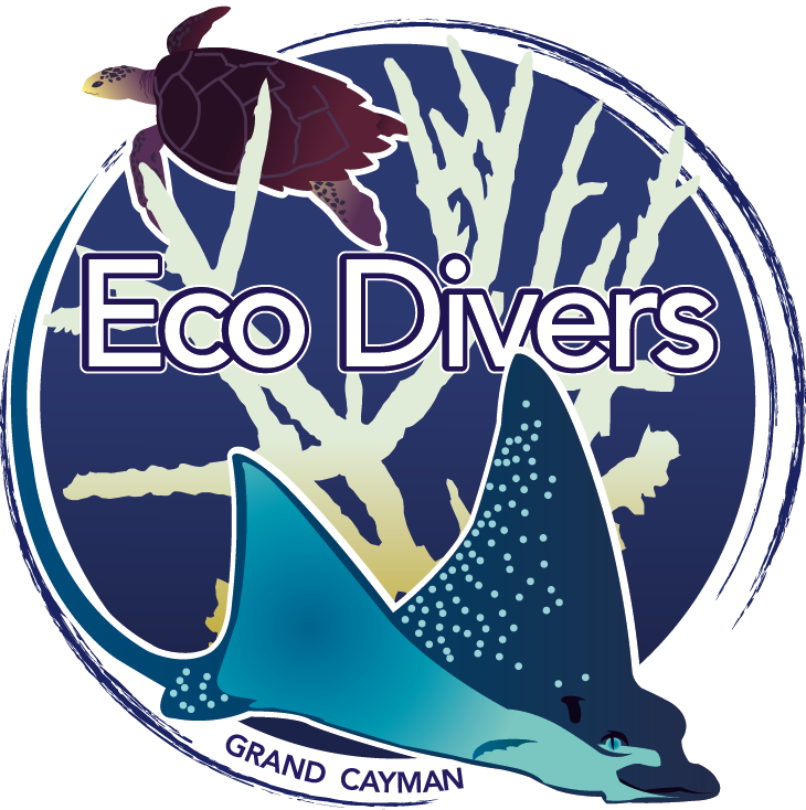Eco Chic Cayman Friends